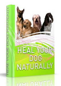 Healing Your Dog Naturally eBook